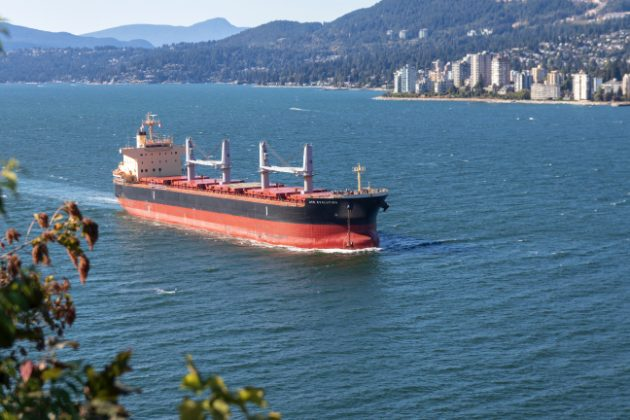 Economic and Biophysical Impacts of Oil Tanker Spills Relevant to Vancouver, Canada - Download the Literature Review - Photo: Unsplash